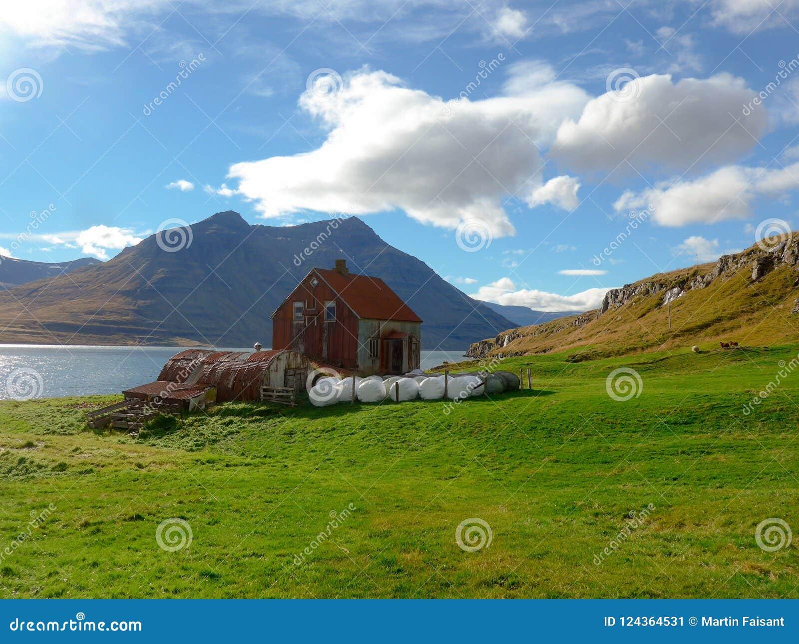 Azienda agricola nel fiordo di Seyðisfjörður in Islanda