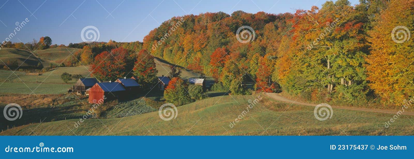 Azienda agricola nel sud di Woodstock