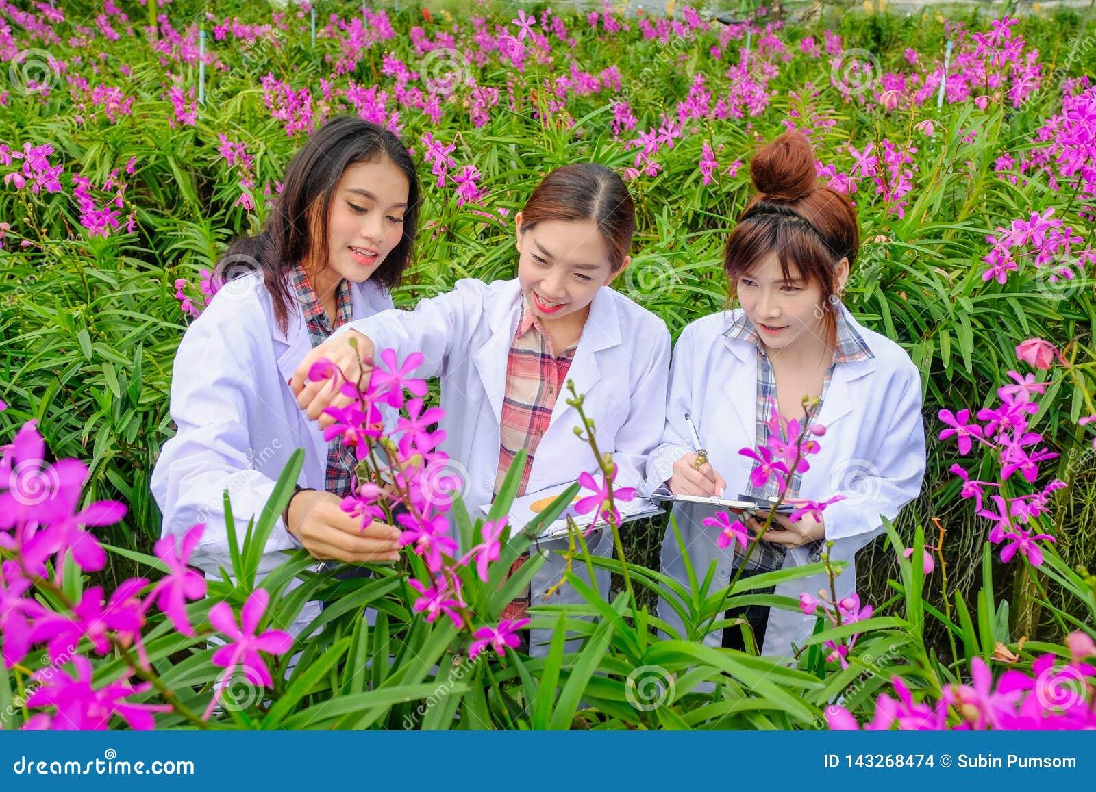 Azjatycka kobieta, badacz w biel sukni i bada orchidea ogród dla badanie i rozwój nowych storczykowych gatunków