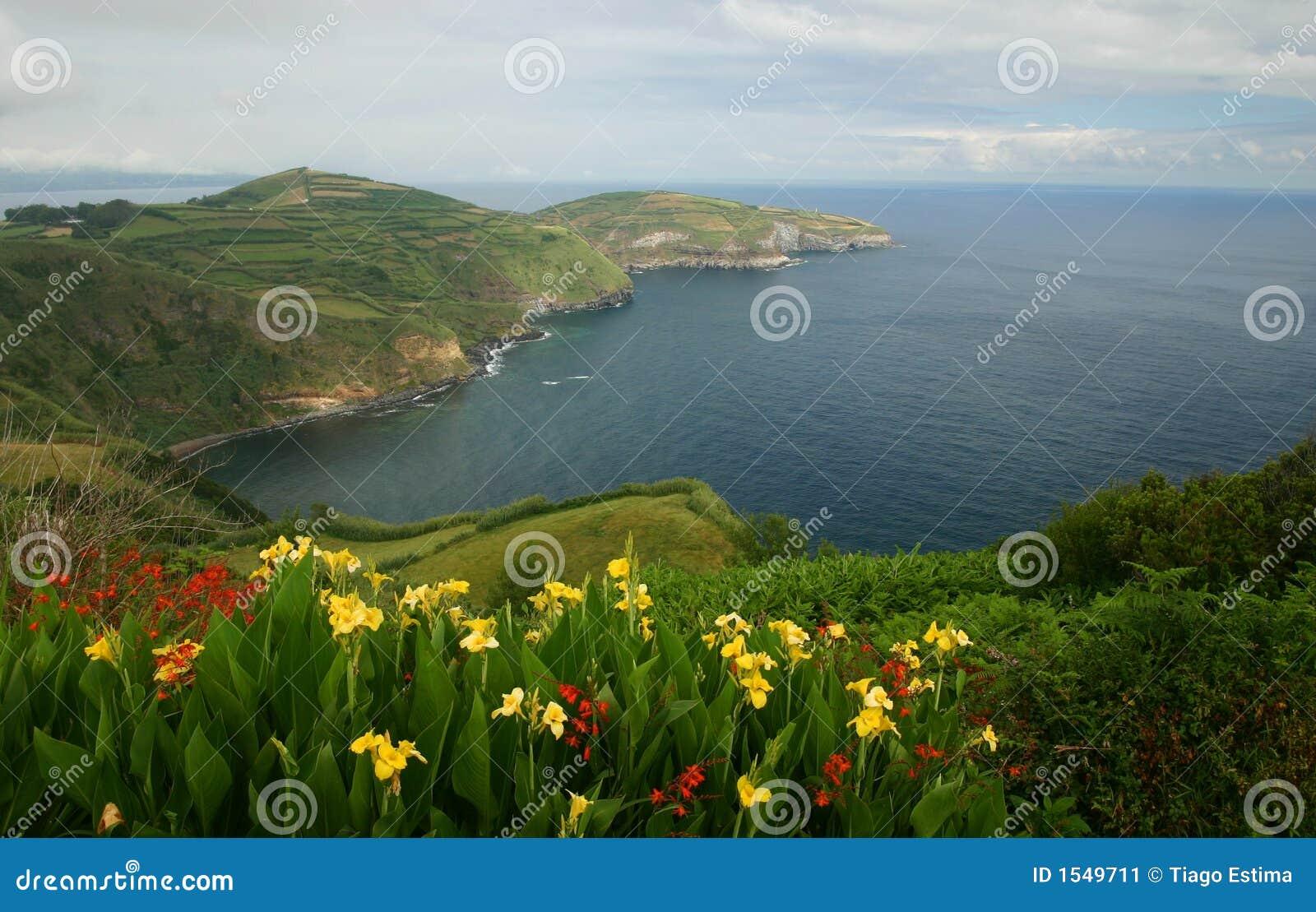 Azorean视图