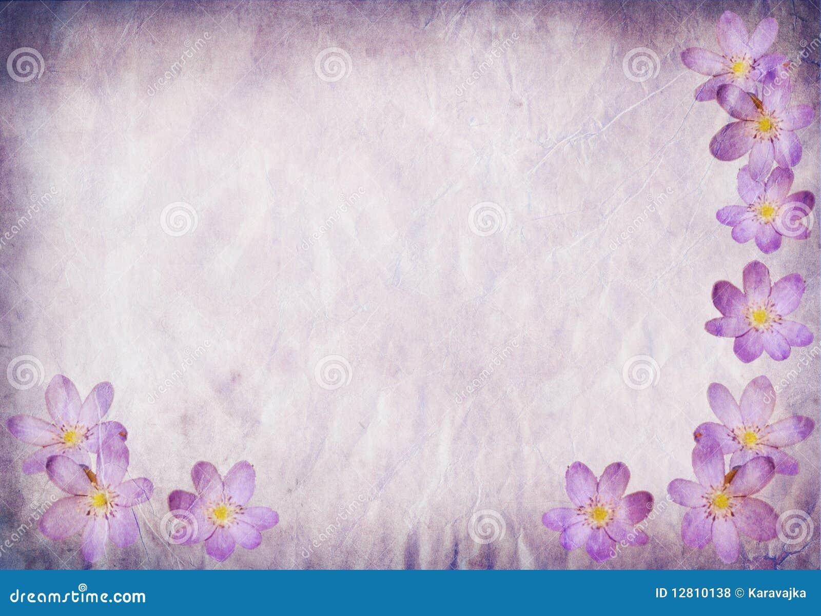Azul de papel velho do fundo com elementos florais