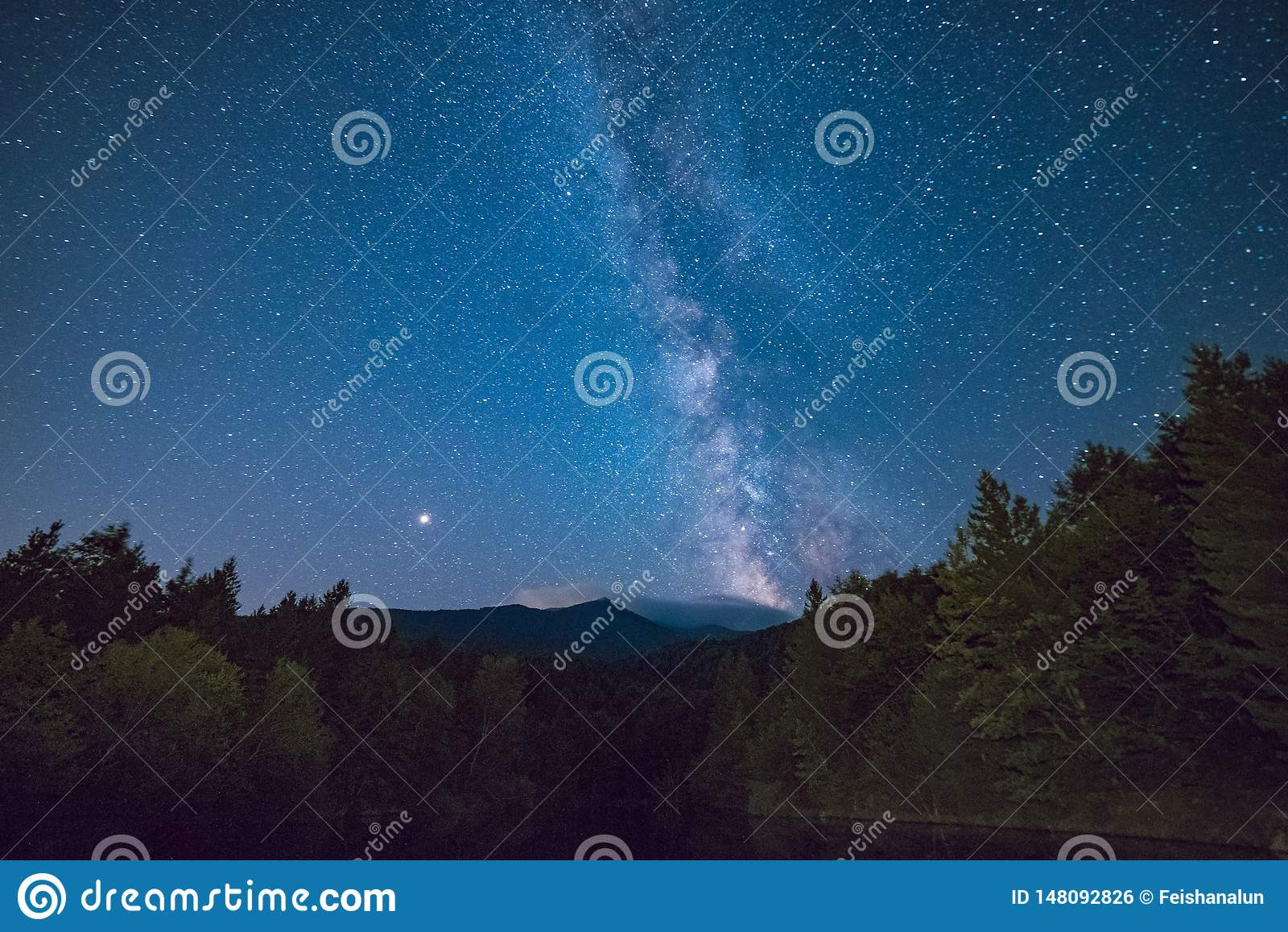 Azul estrelado da árvore das madeiras do céu
