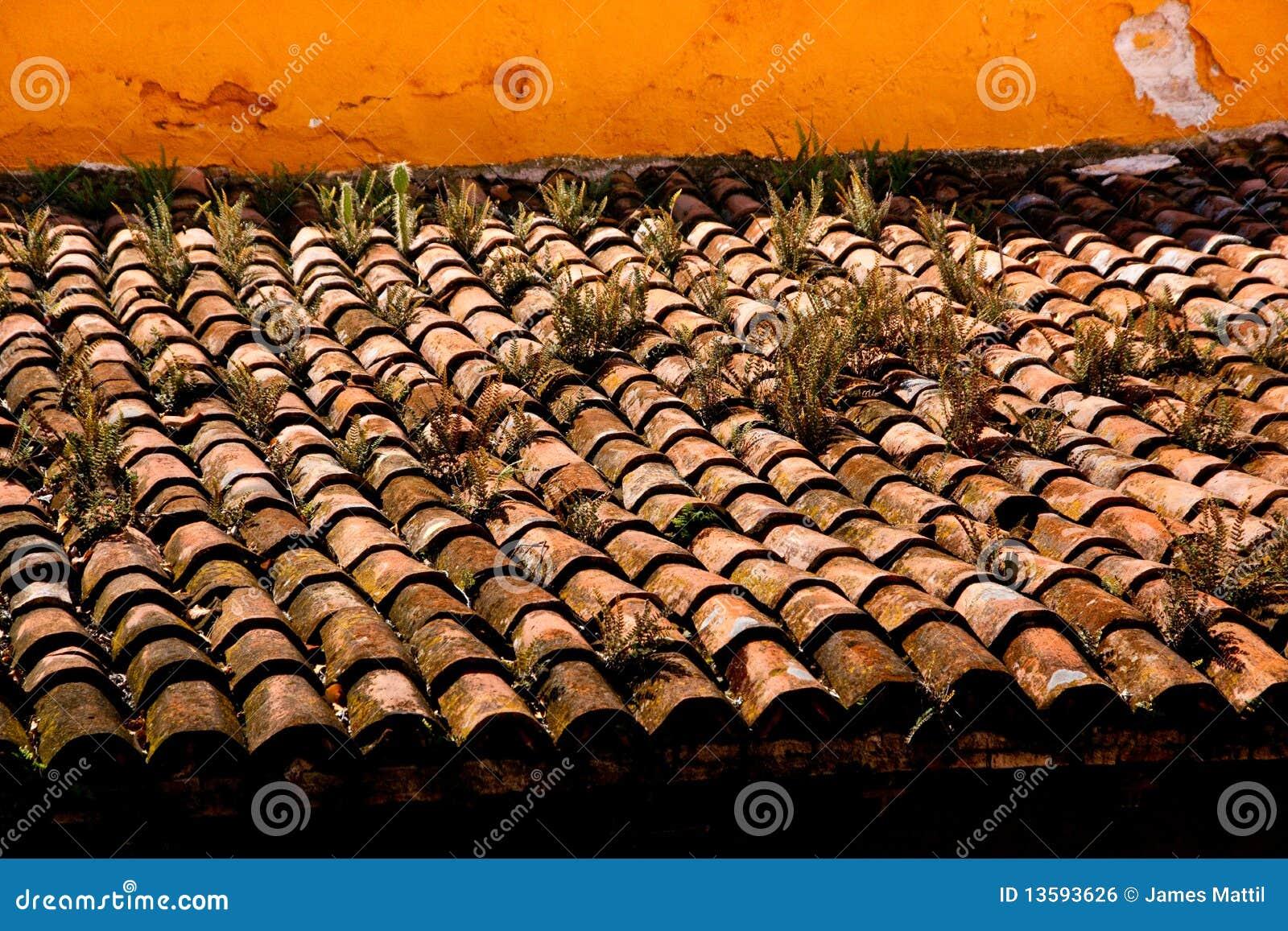 Azulejos de azotea resistidos r sticos imagen de archivo for Hacienda los azulejos
