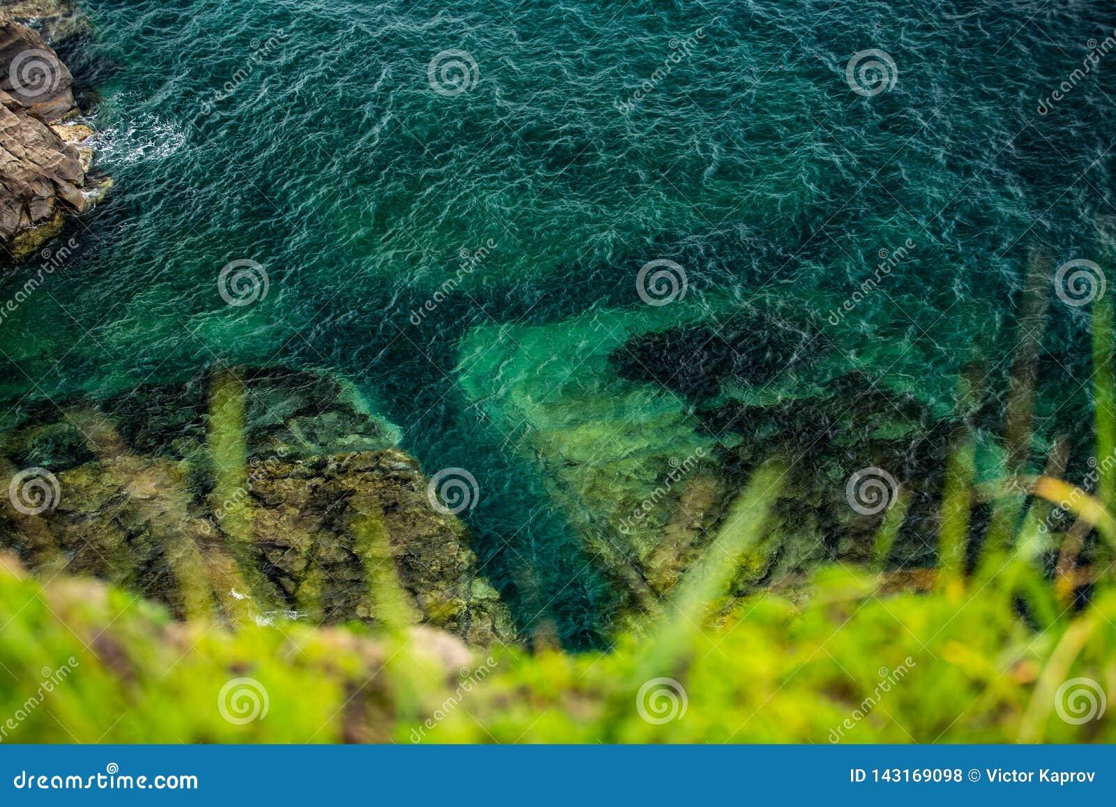 Azurt hav och gräs i förgrunden