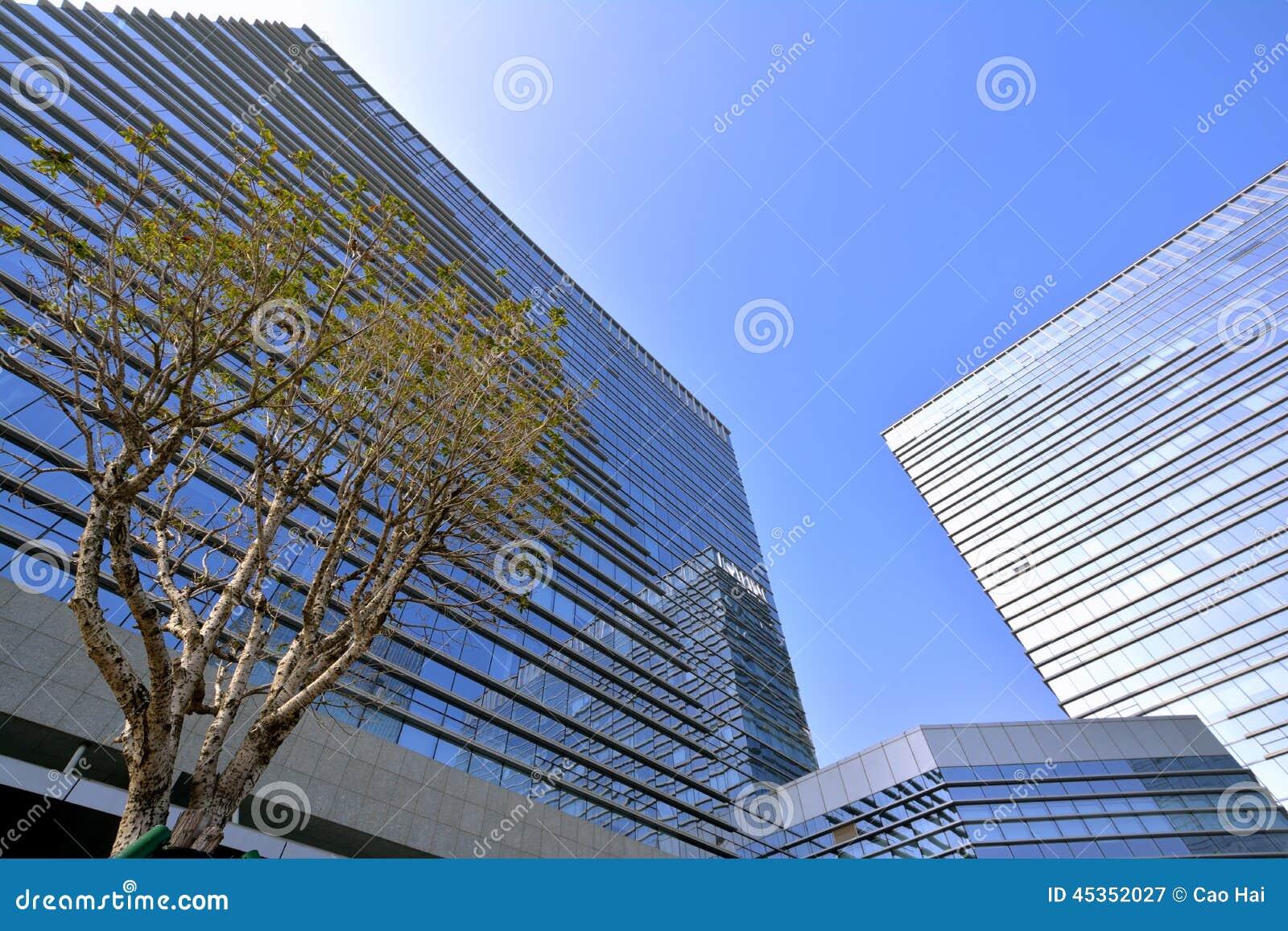 Bâtiments modernes avec l arbre