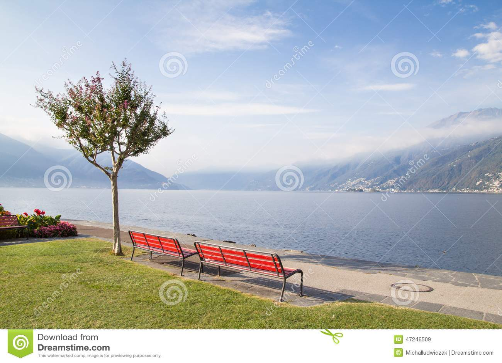 Bänkar och träd på den schweiziska sjön
