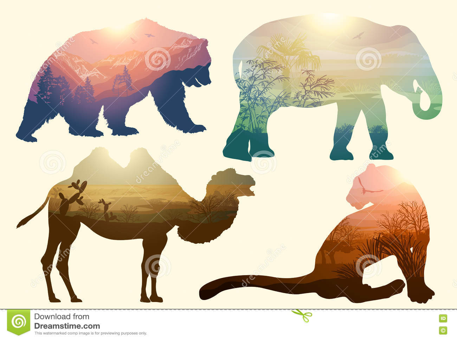 Bär, Elefant, Kamel und Leopard, wild lebende Tiere