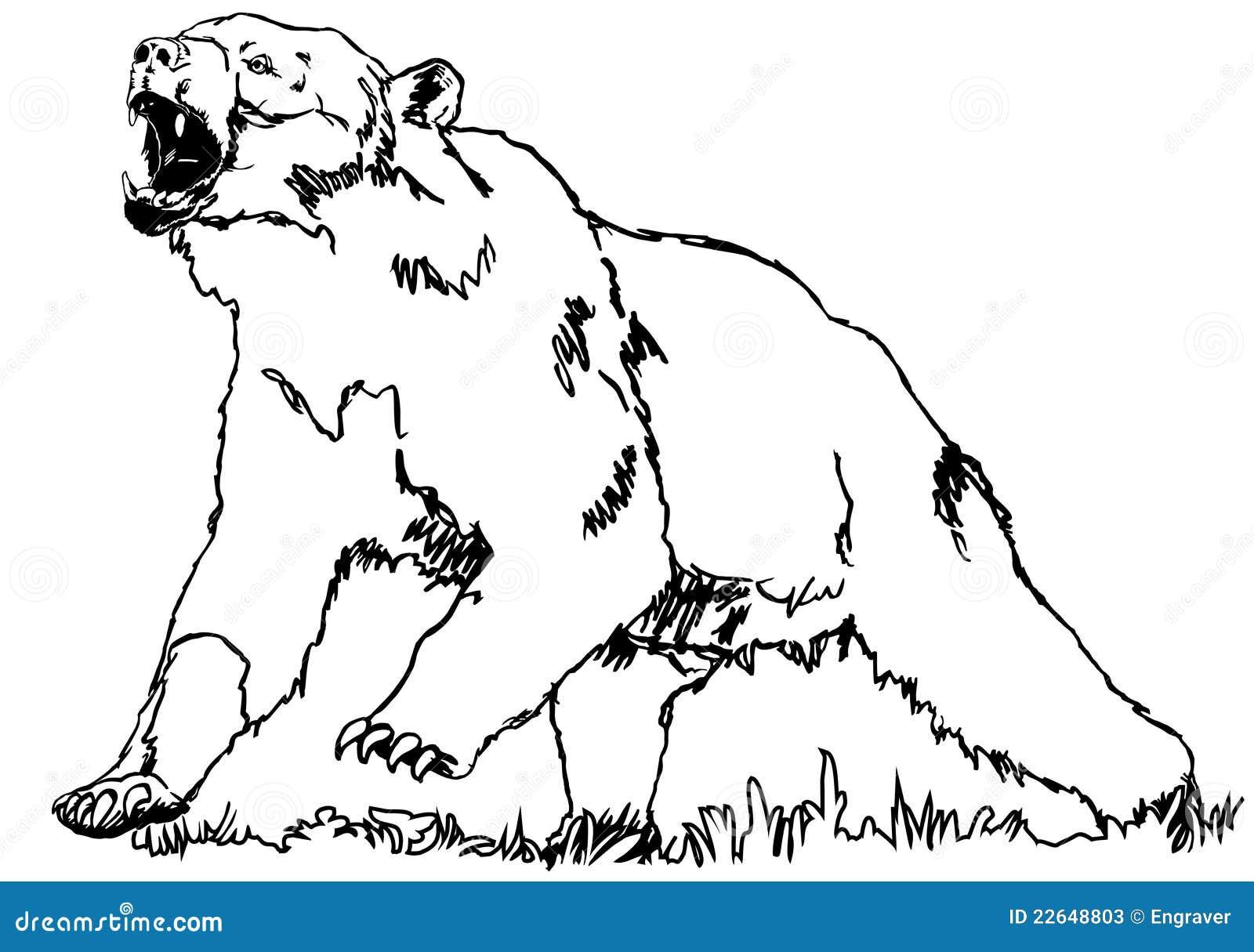 Berühmt Malvorlagen Eines Bären Zeitgenössisch - Beispiel Business ...