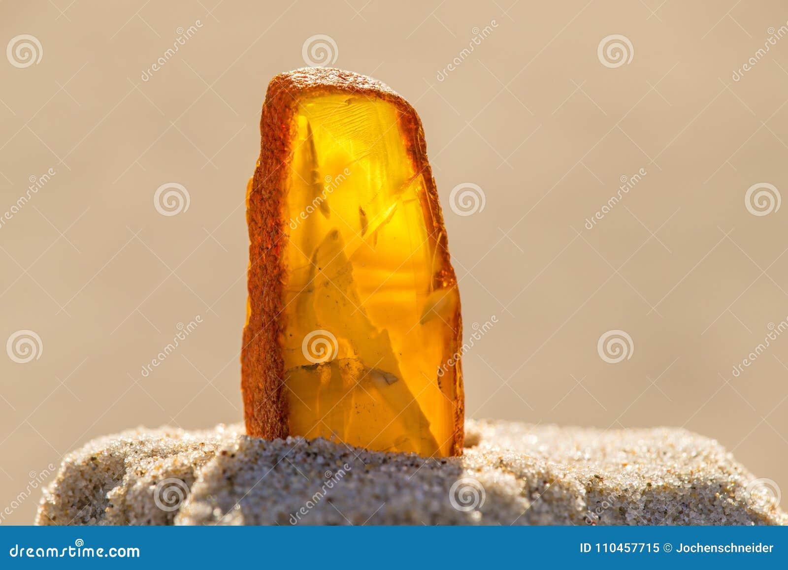 Bärnsten i sol på en strand av det baltiska havet