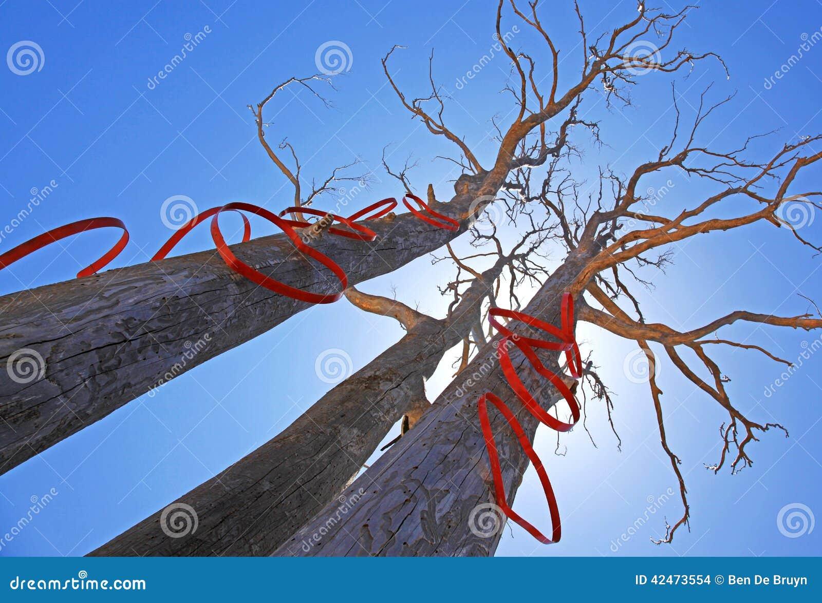 Bäume mit Herzformen in der Sonne