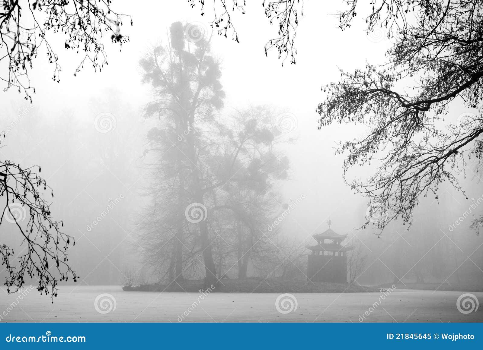 Bäume und Dorn im Nebel