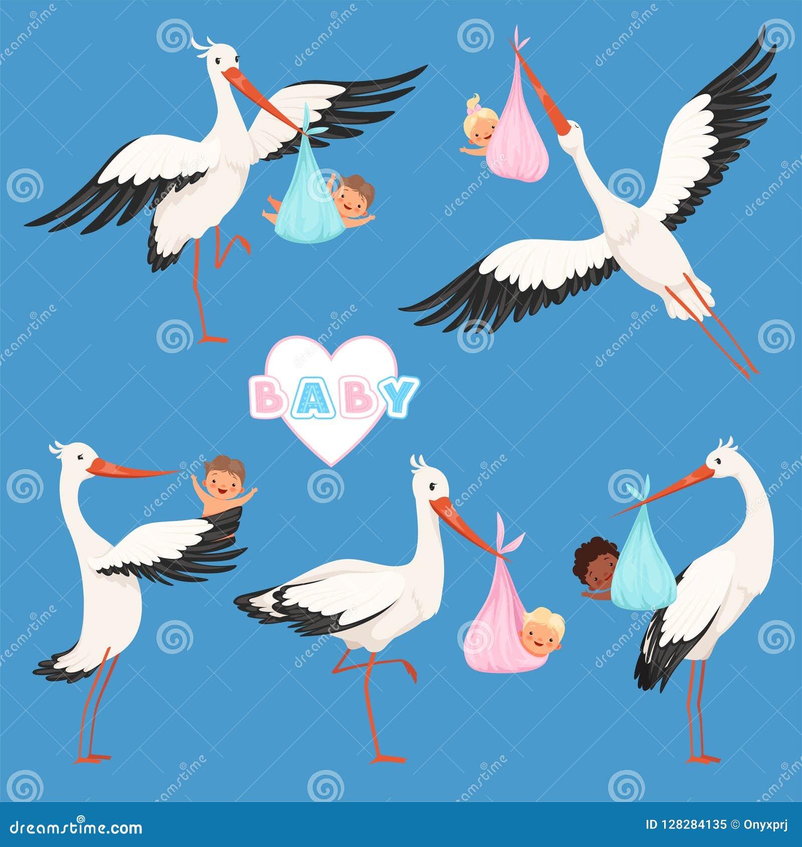 Toute une nouvelle  B%C3%A9b%C3%A9-de-cigogne-vol-le-vecteur-mignon-nouveau-n%C3%A9-petits-enfants-la-livraison-d-oiseau-portent-des-caract%C3%A8res-isolement-128284135