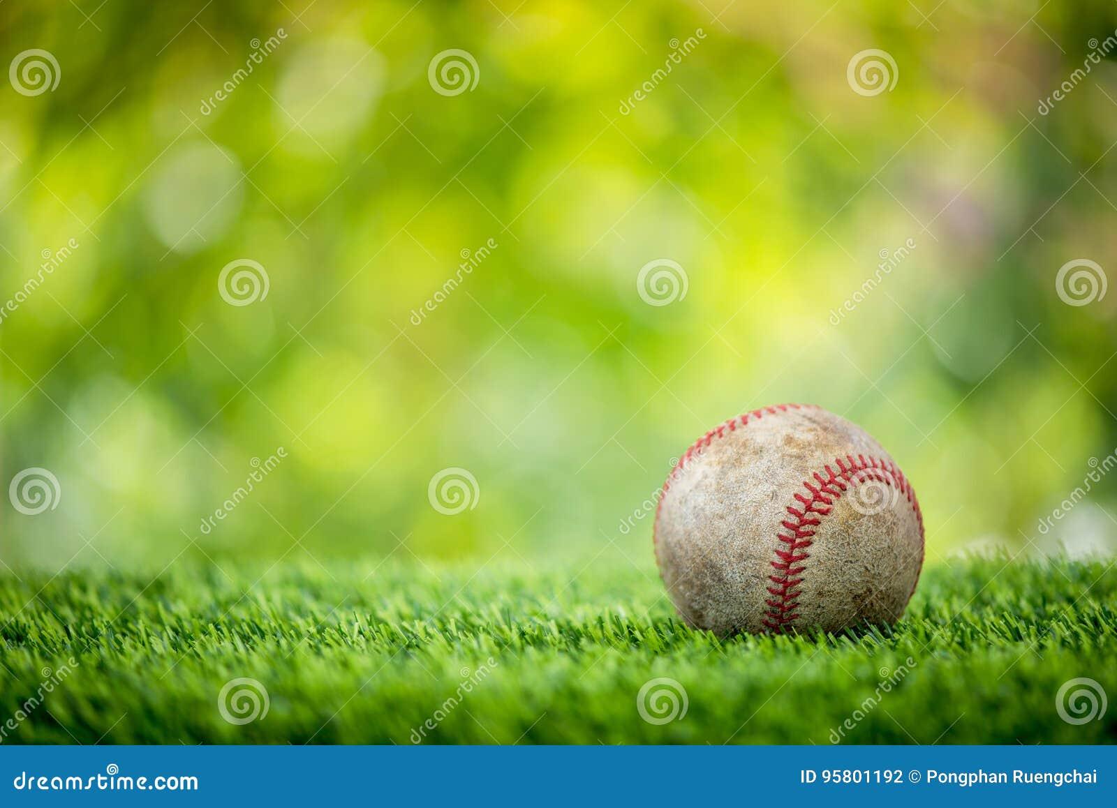 Béisbol en hierba