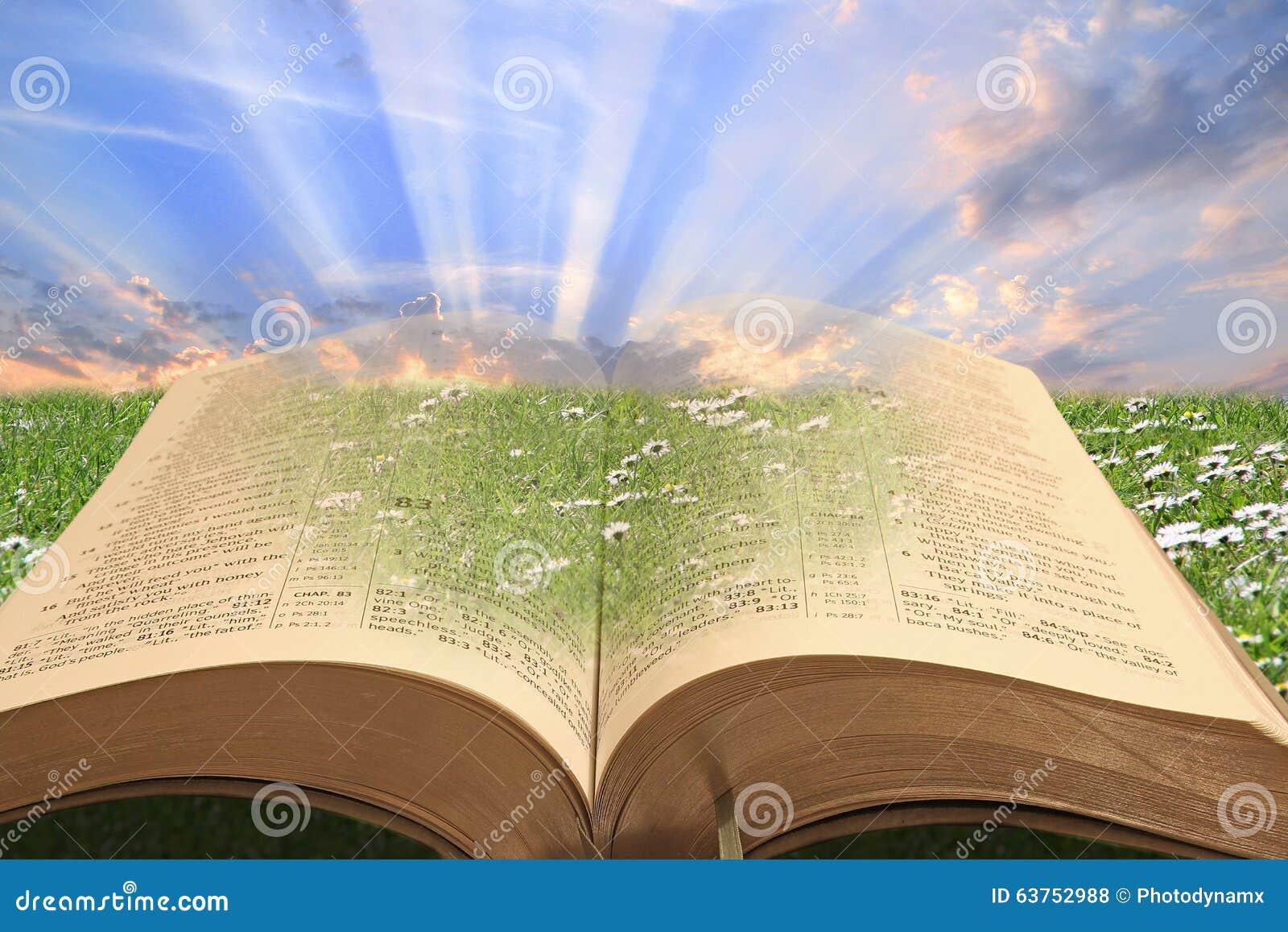 A Bíblia um presente do deus!