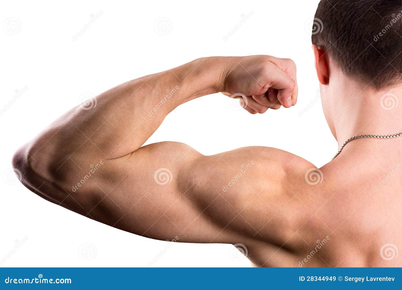 Bíceps forte