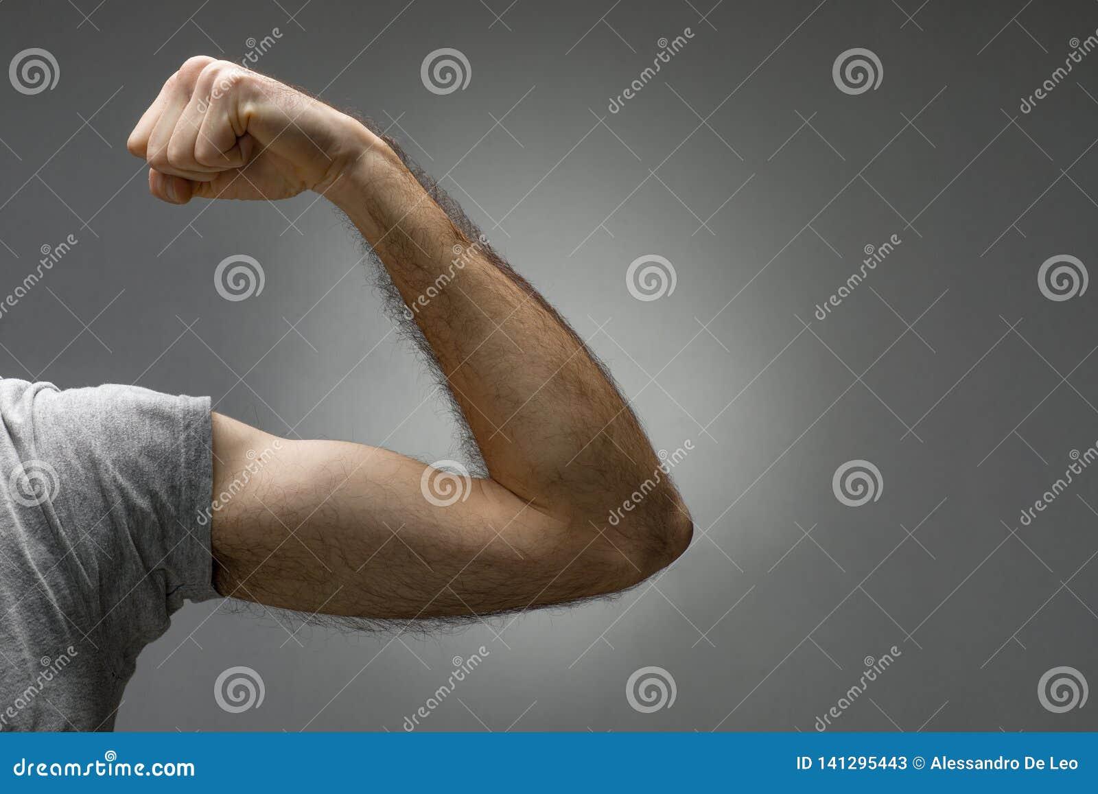 Bíceps melenudo fino