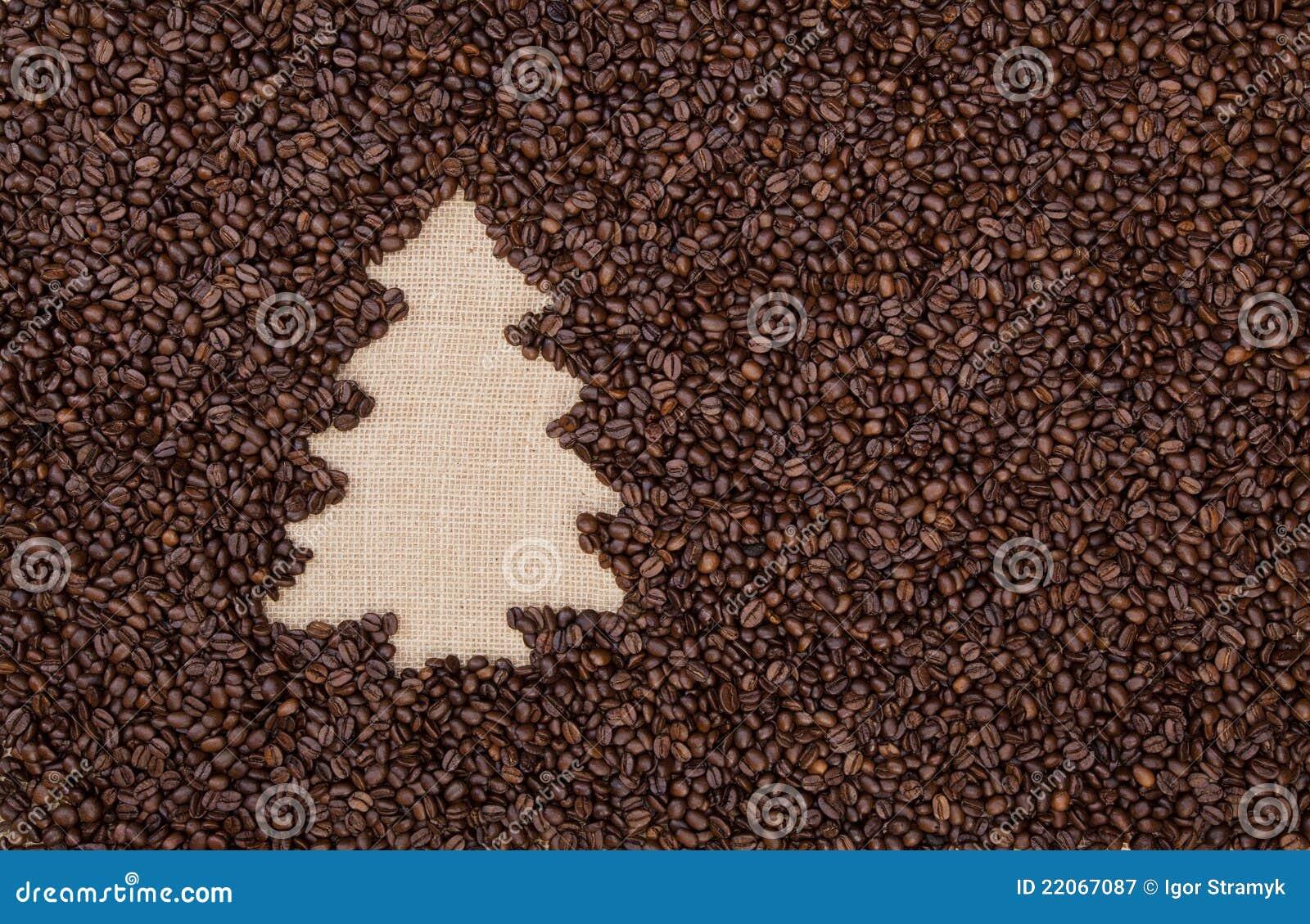 Bönakaffegran gjorde treen