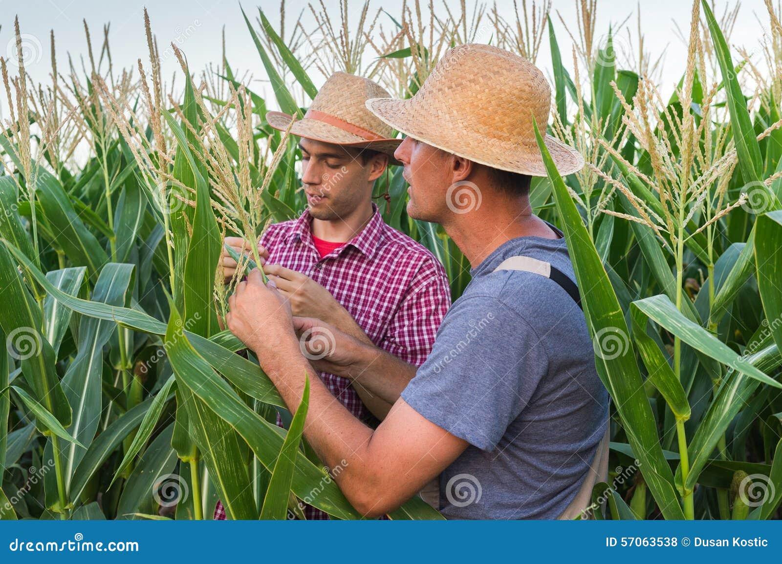 Bönder
