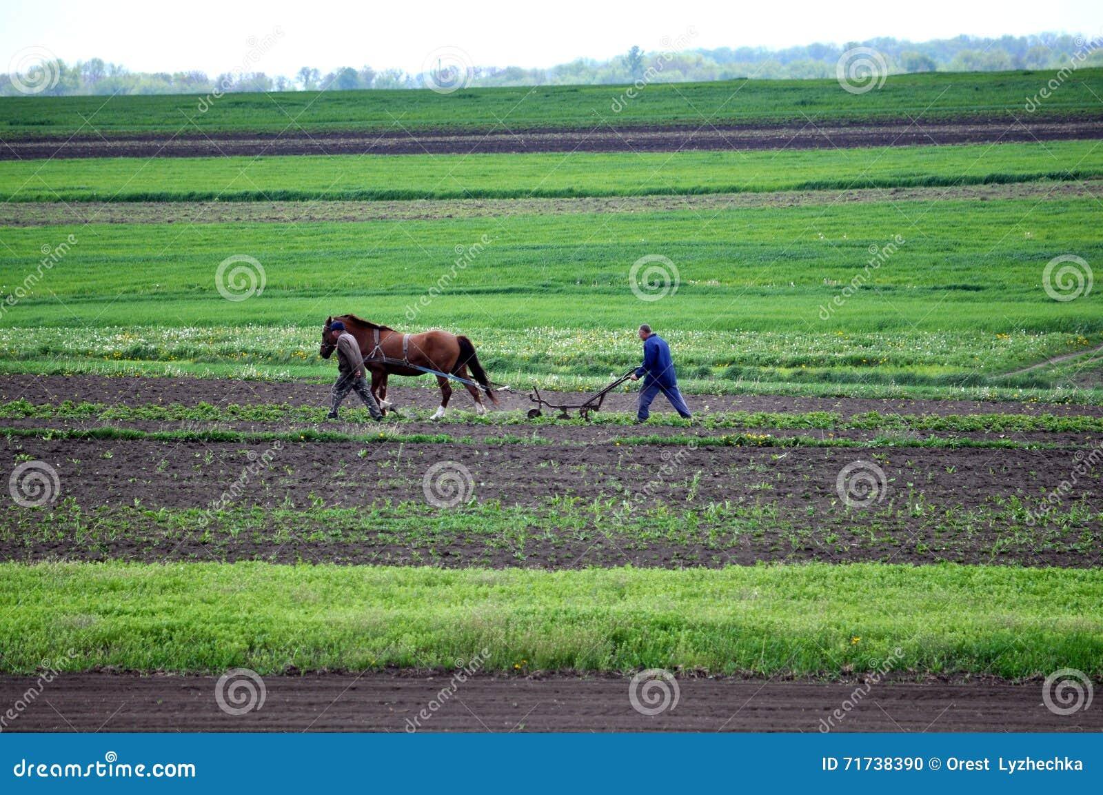 Bönder som arbetar på deras täppa