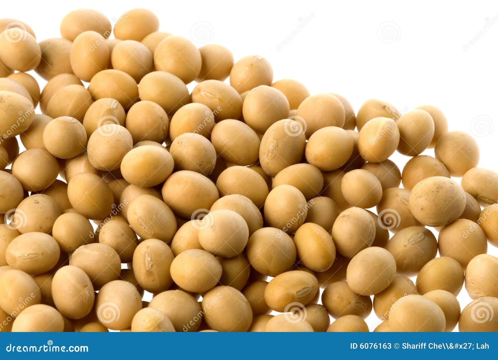 Bönor isolerade soja