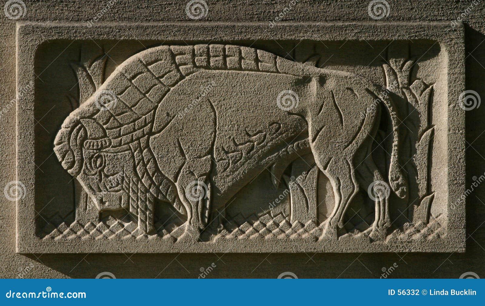 Búfalo grabado al agua fuerte en piedra