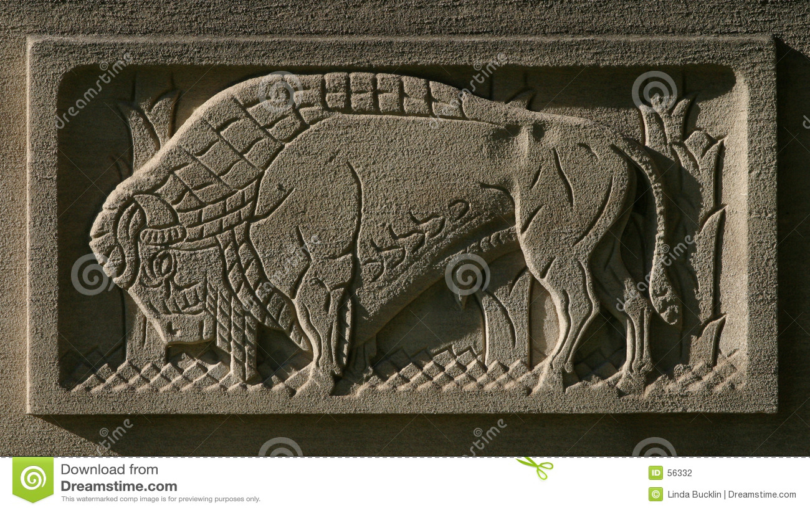 Búfalo gravado na pedra