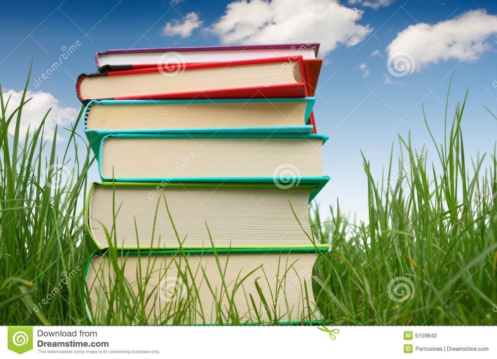Bücher auf dem Gras