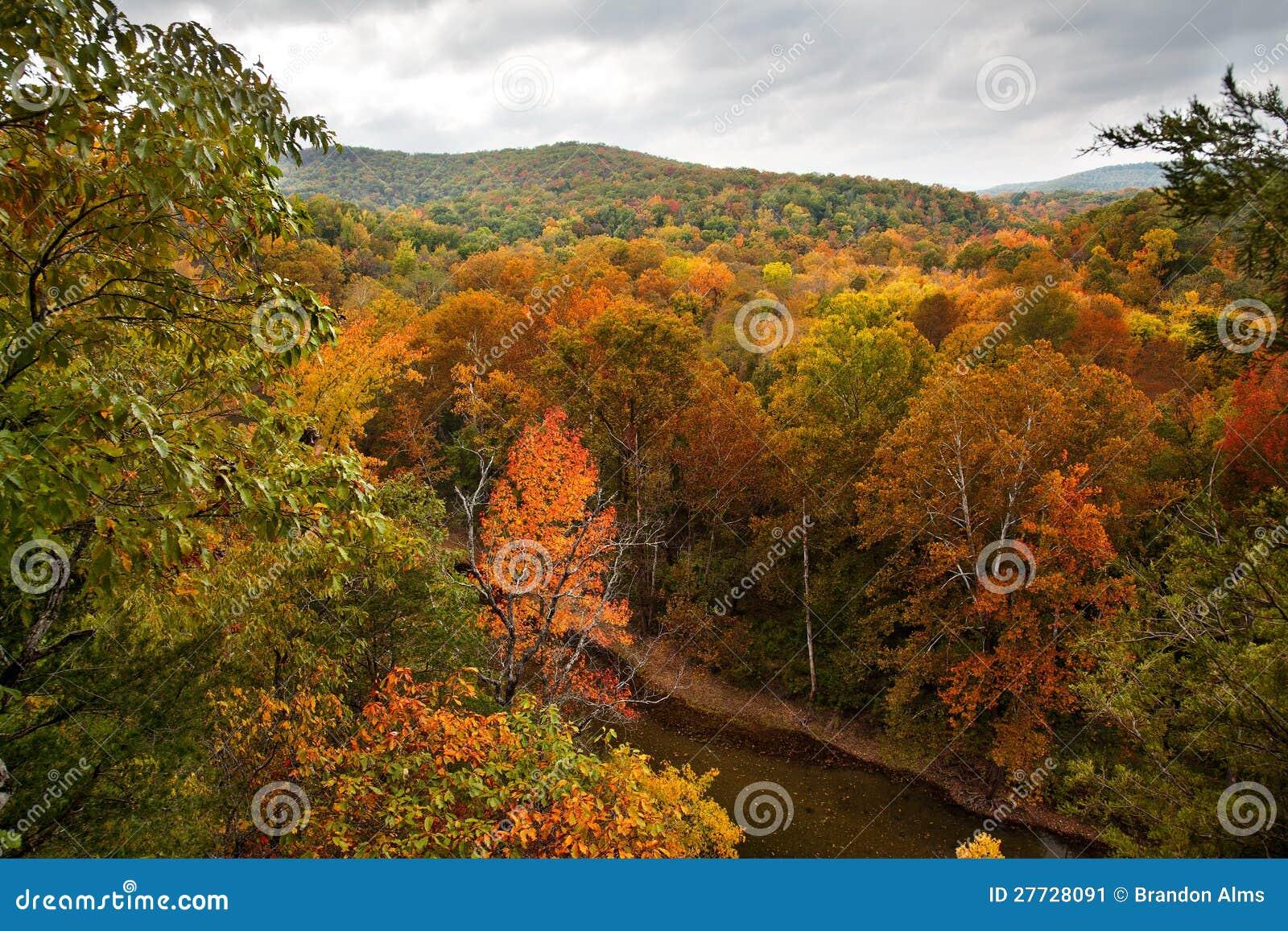 Büffel-Fluss im Herbst