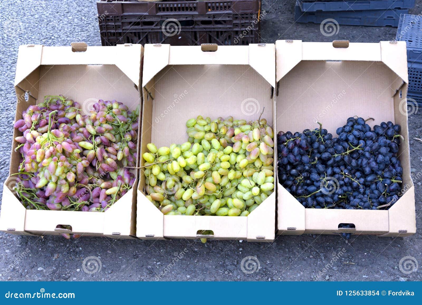 Bündel der reifen grünen Trauben für das Kochen des Weins und des Lebensmittels werden in den Pappquadratischen Kästen für Transp