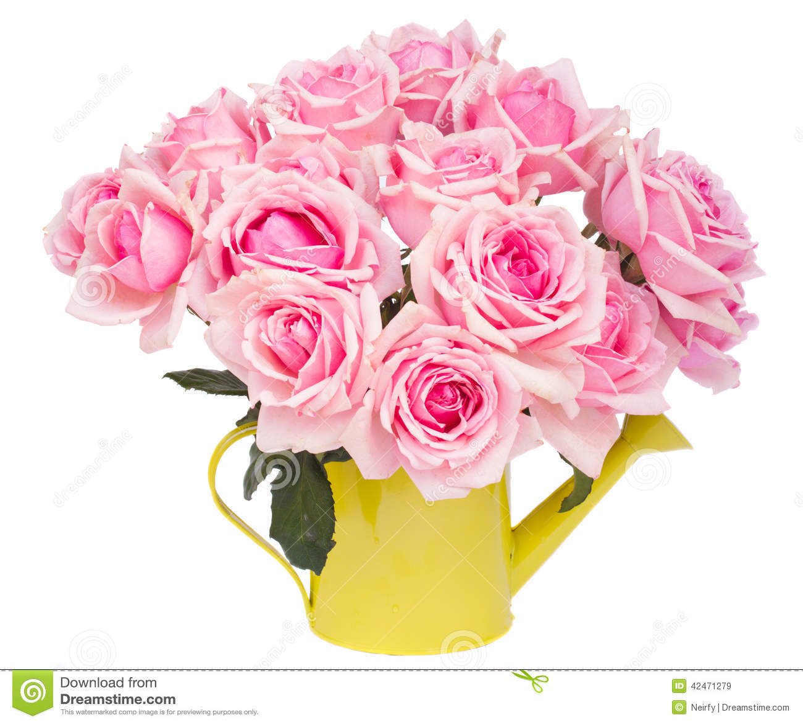 Bündel frische rosa Rosen