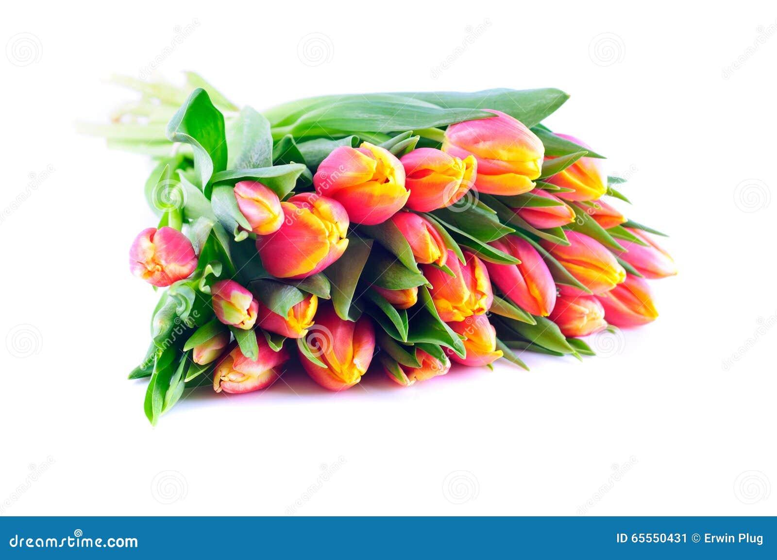 Bündel zweifarbige orangegelbe Tulpen