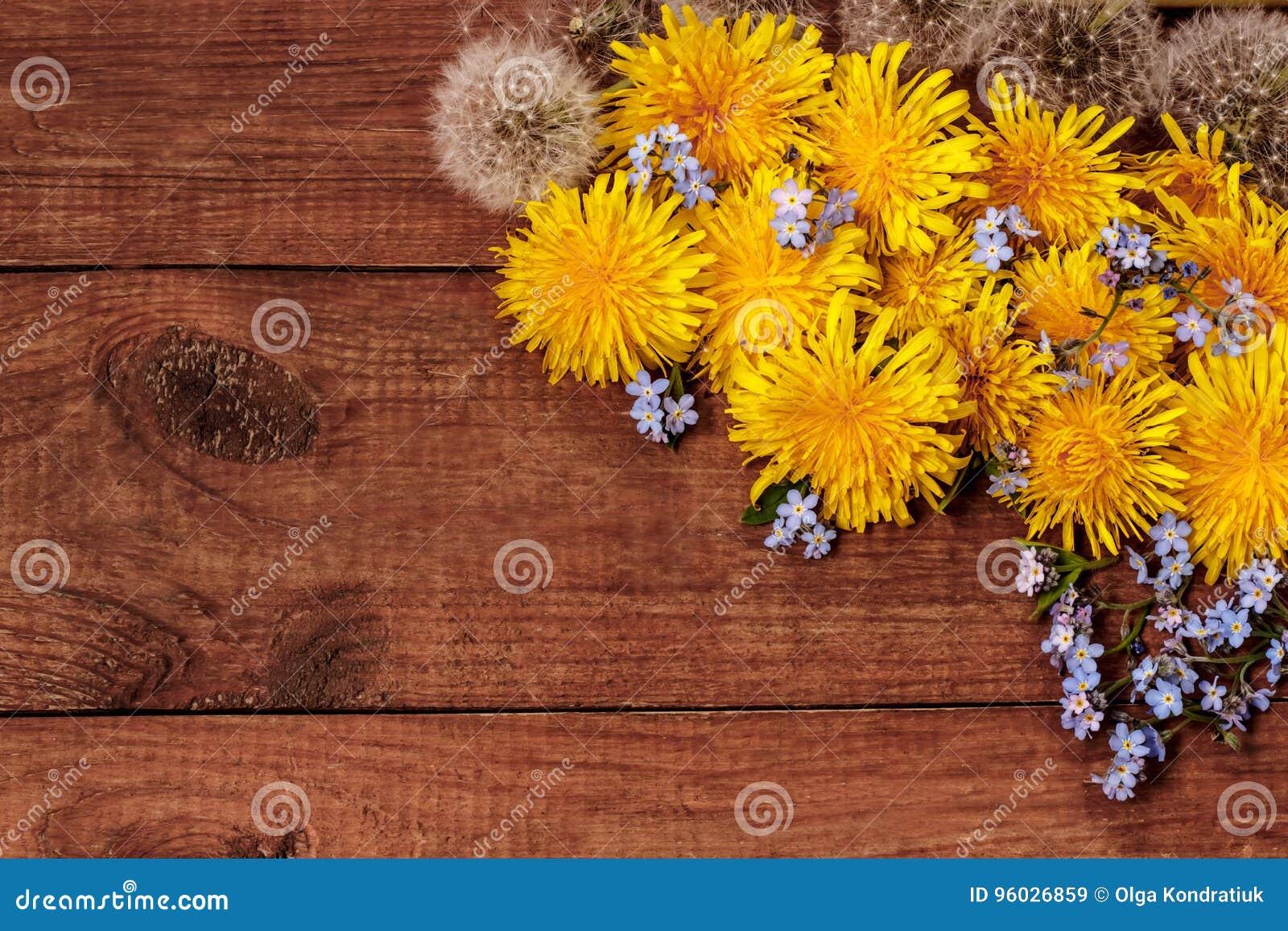 Błękit ja, żółci i biali dandelions na brown drewnianym tle,