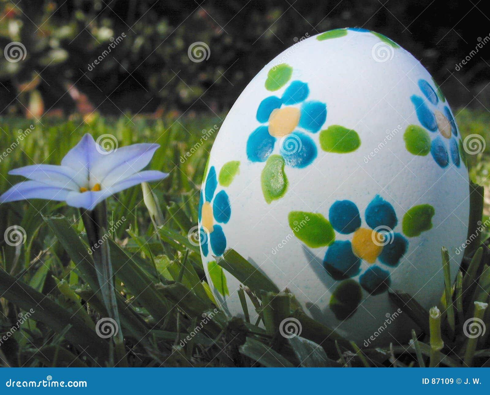 Błękitne kwiaty Wielkanoc jaj