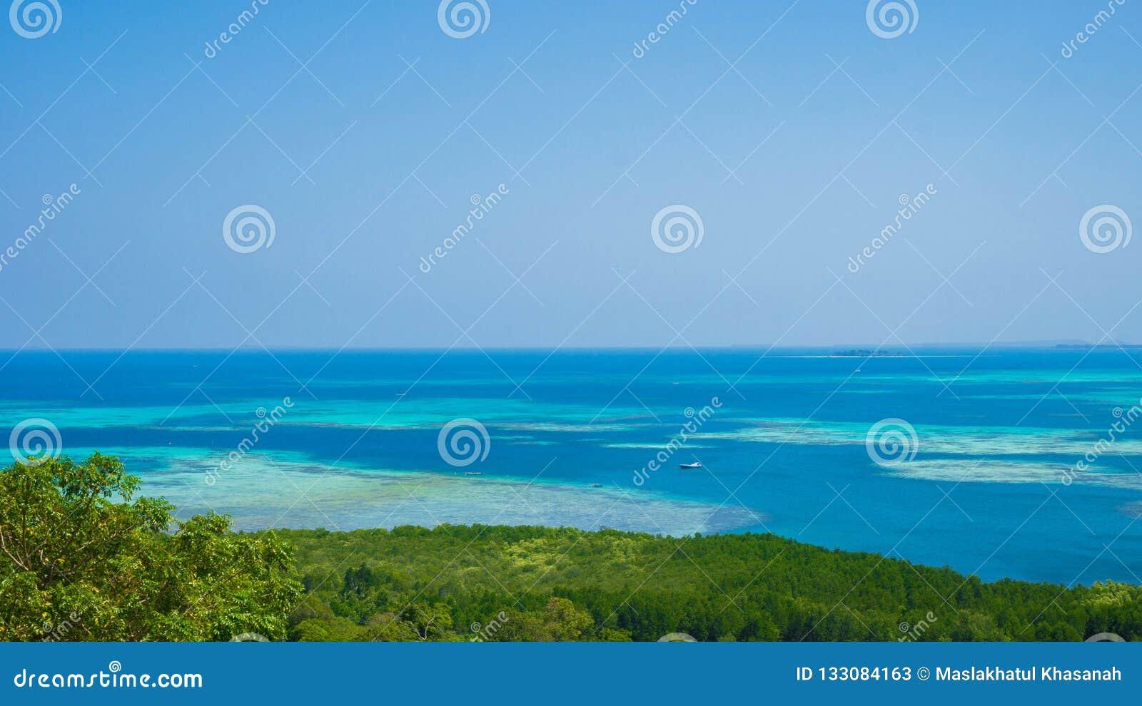 Błękitne wody morze z turkus wodą i zieleń drzewny las w karimun jawie