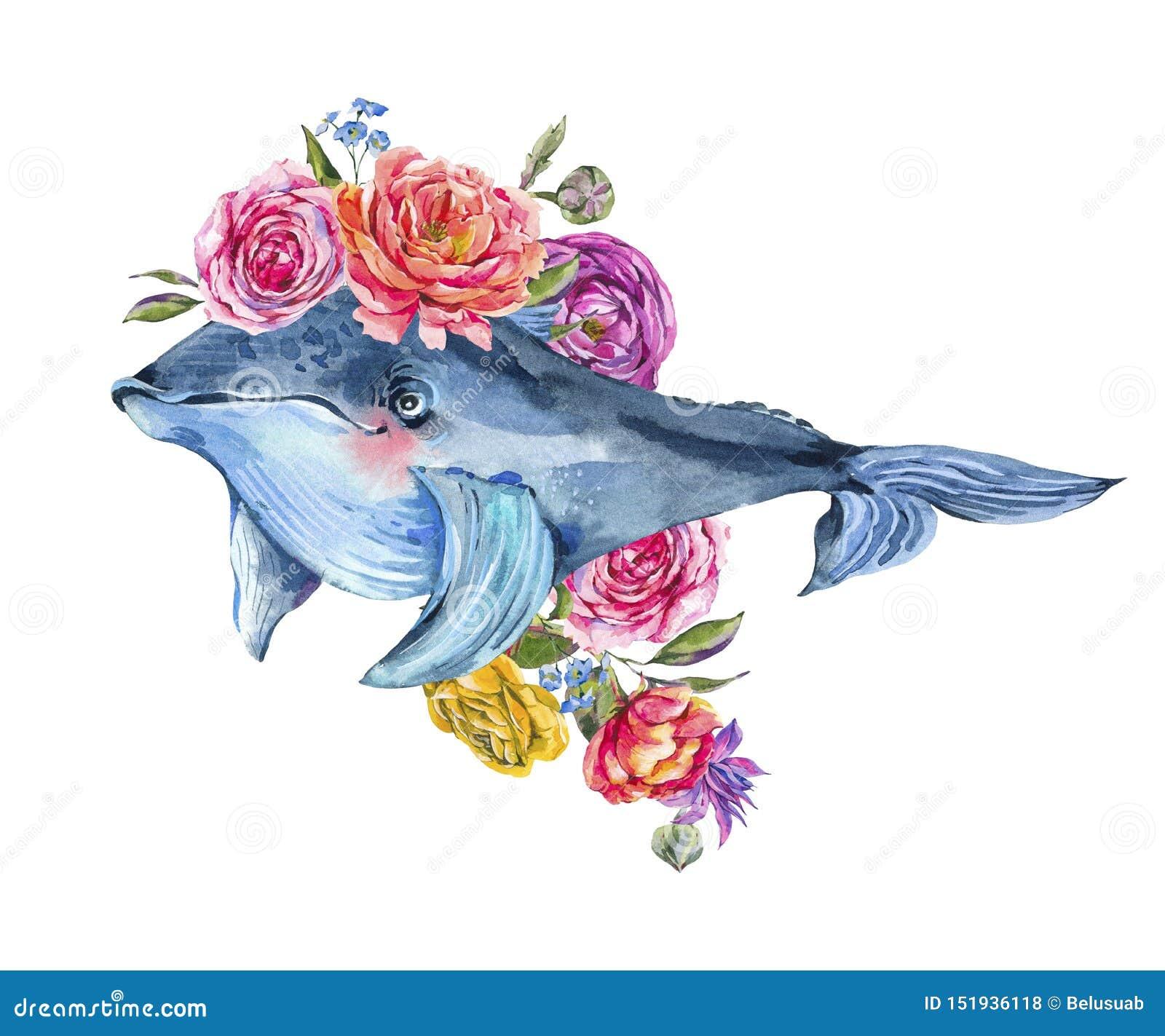 Błękitnego wieloryba akwarela z wzrastał, anemony, lato kwiaty Nautyczna kartka z pozdrowieniami
