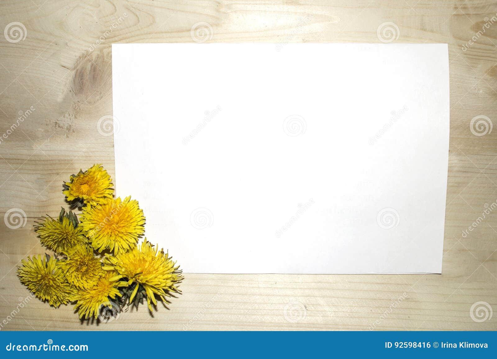 Błękitnej książki żółci dandelions kłama na drewnianym stole