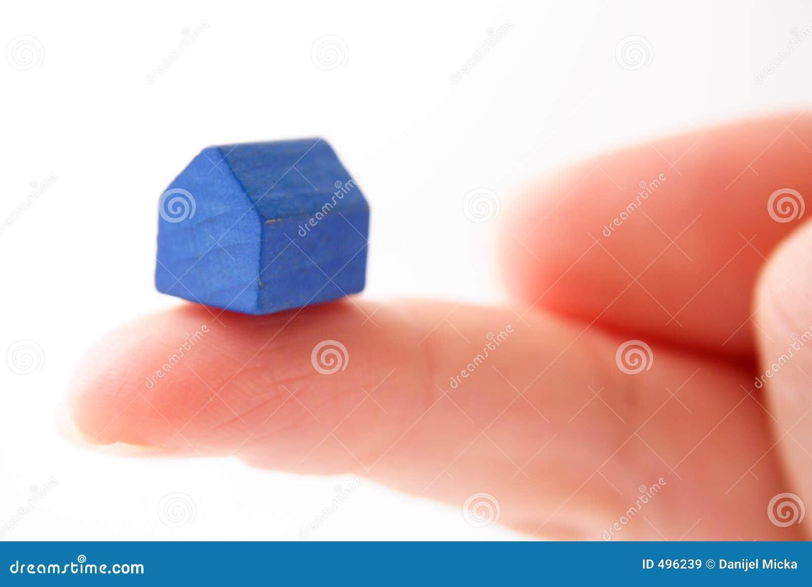 Błękitny dom gospodarstwa