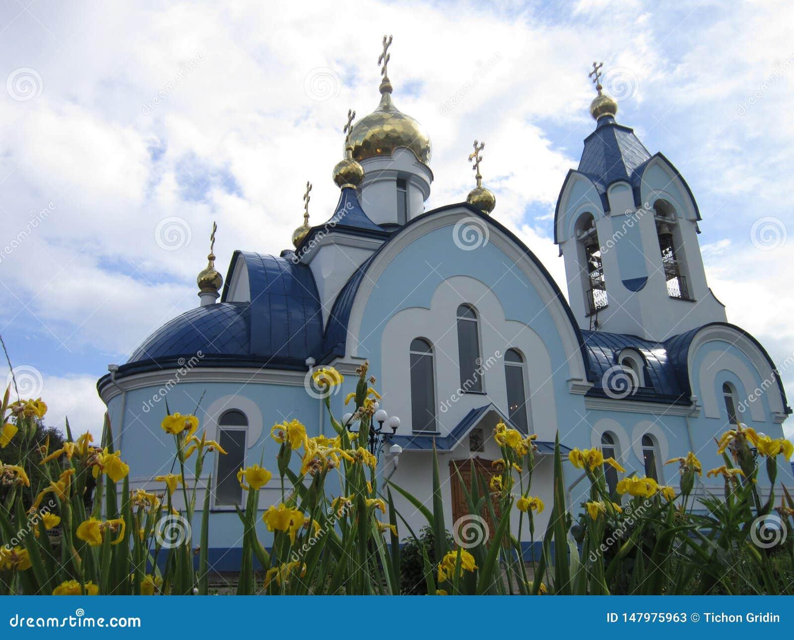 Błękitny kościół z Złotymi kopułami w mieście Sosnovoborsk w Krasnoyarsk Krai i kolor żółty kwitnie irysy w wiośnie