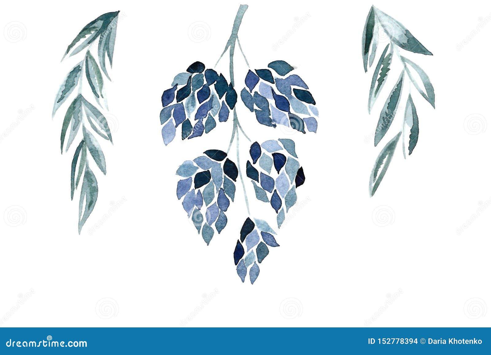 Błękitny kwiecisty illustralion