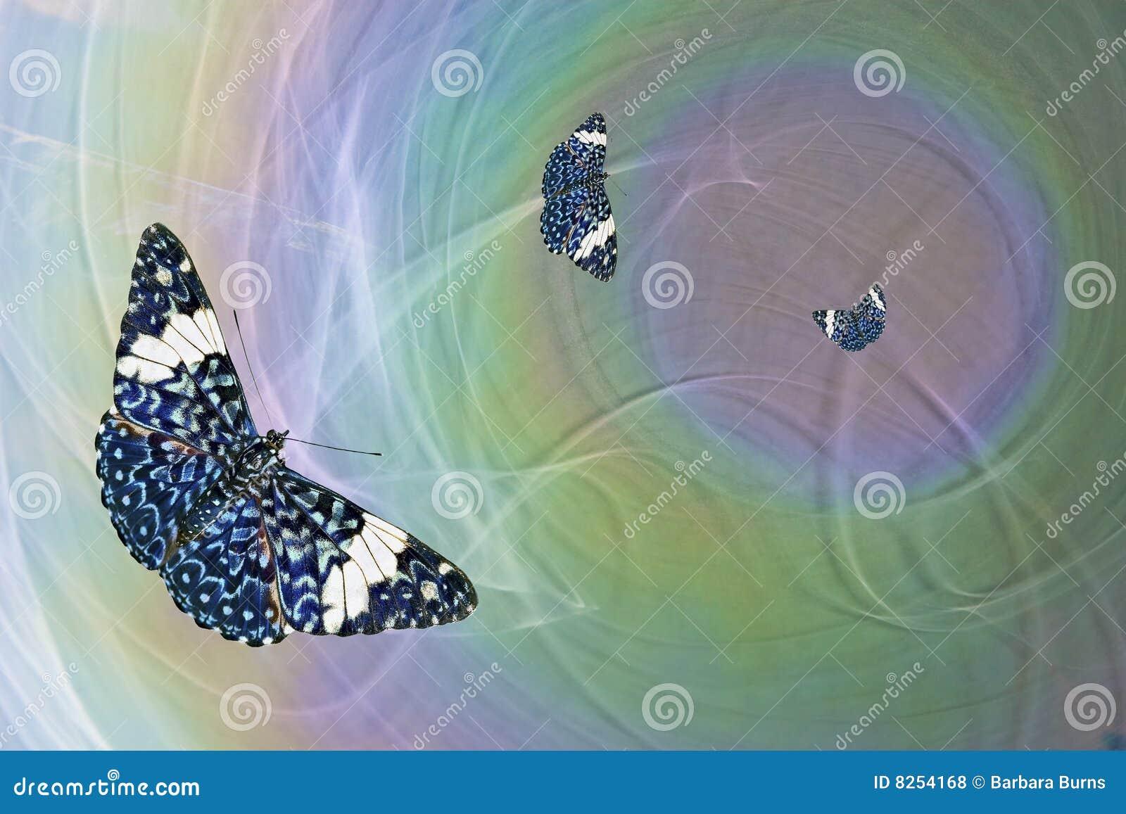 Błękitny motyle trzy