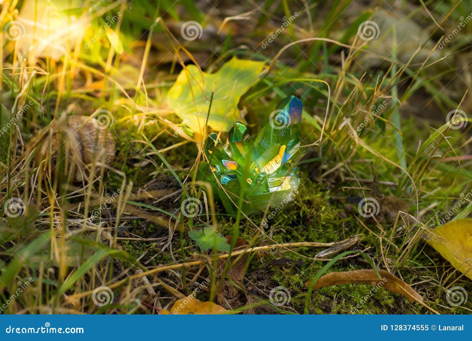 Błyskotliwi zieleni magiczni kryształy w lesie