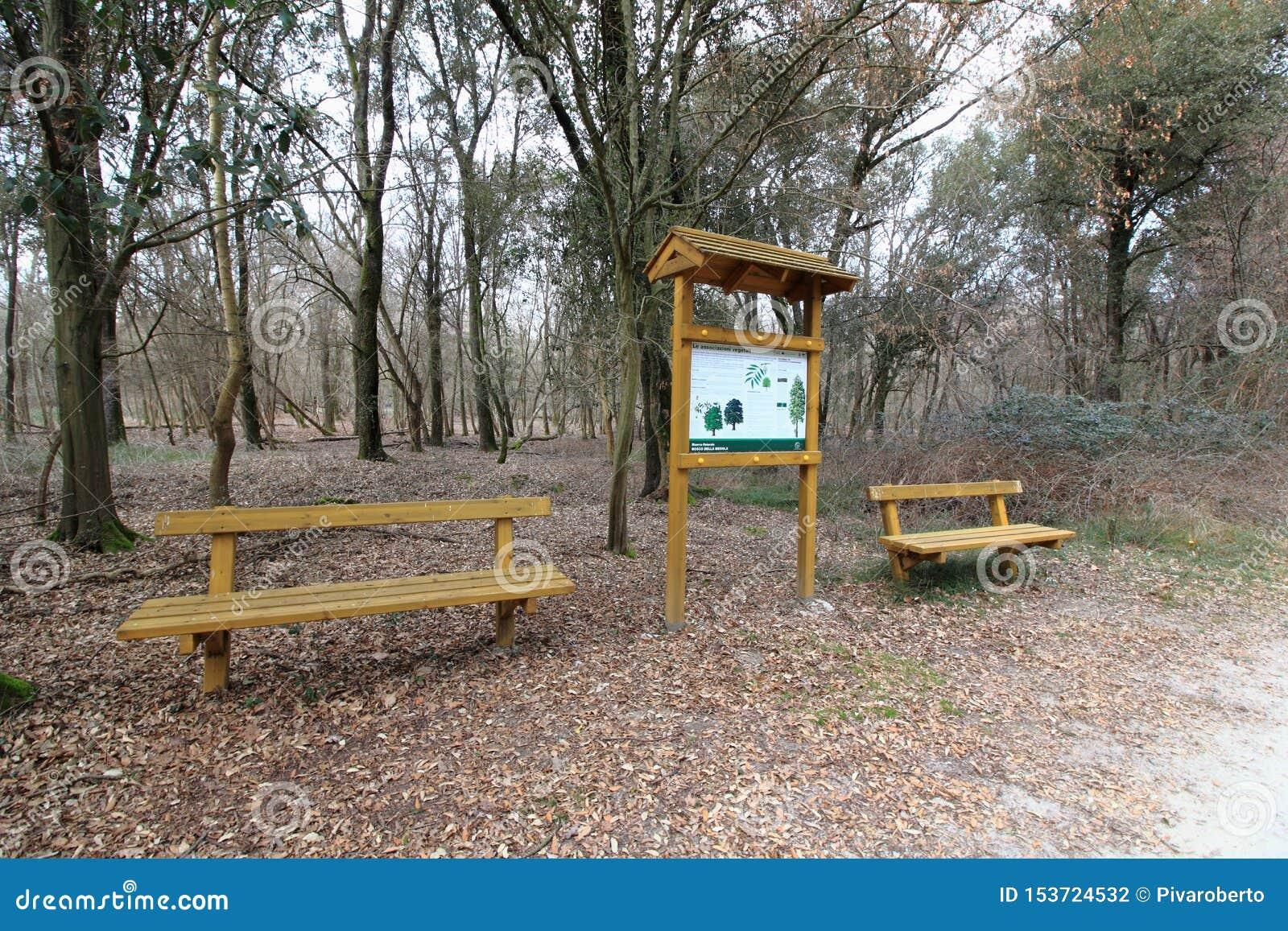 B?nke im Wald Italien