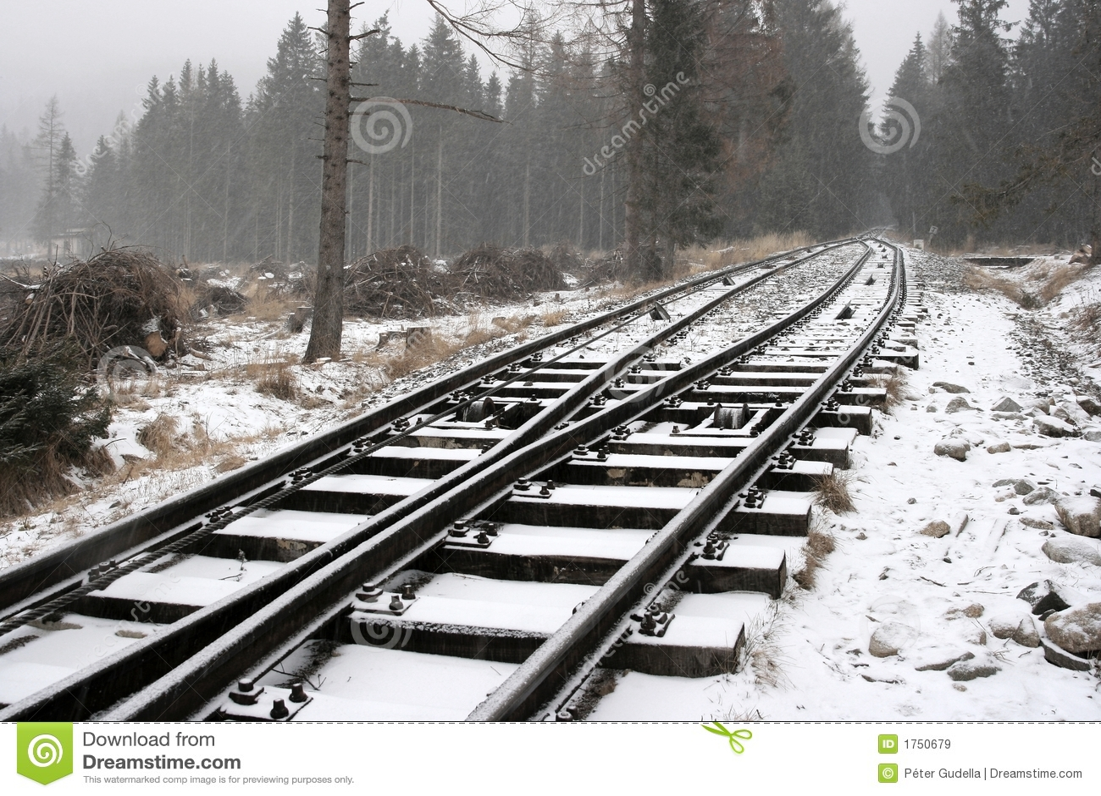 Bałwana kolejowego