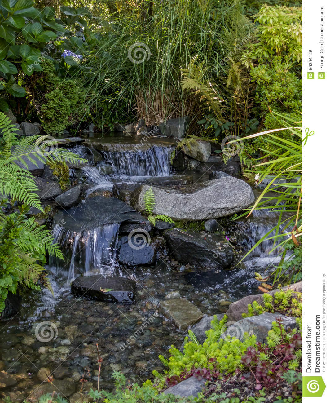 Babbling Brook Flows Over Stone