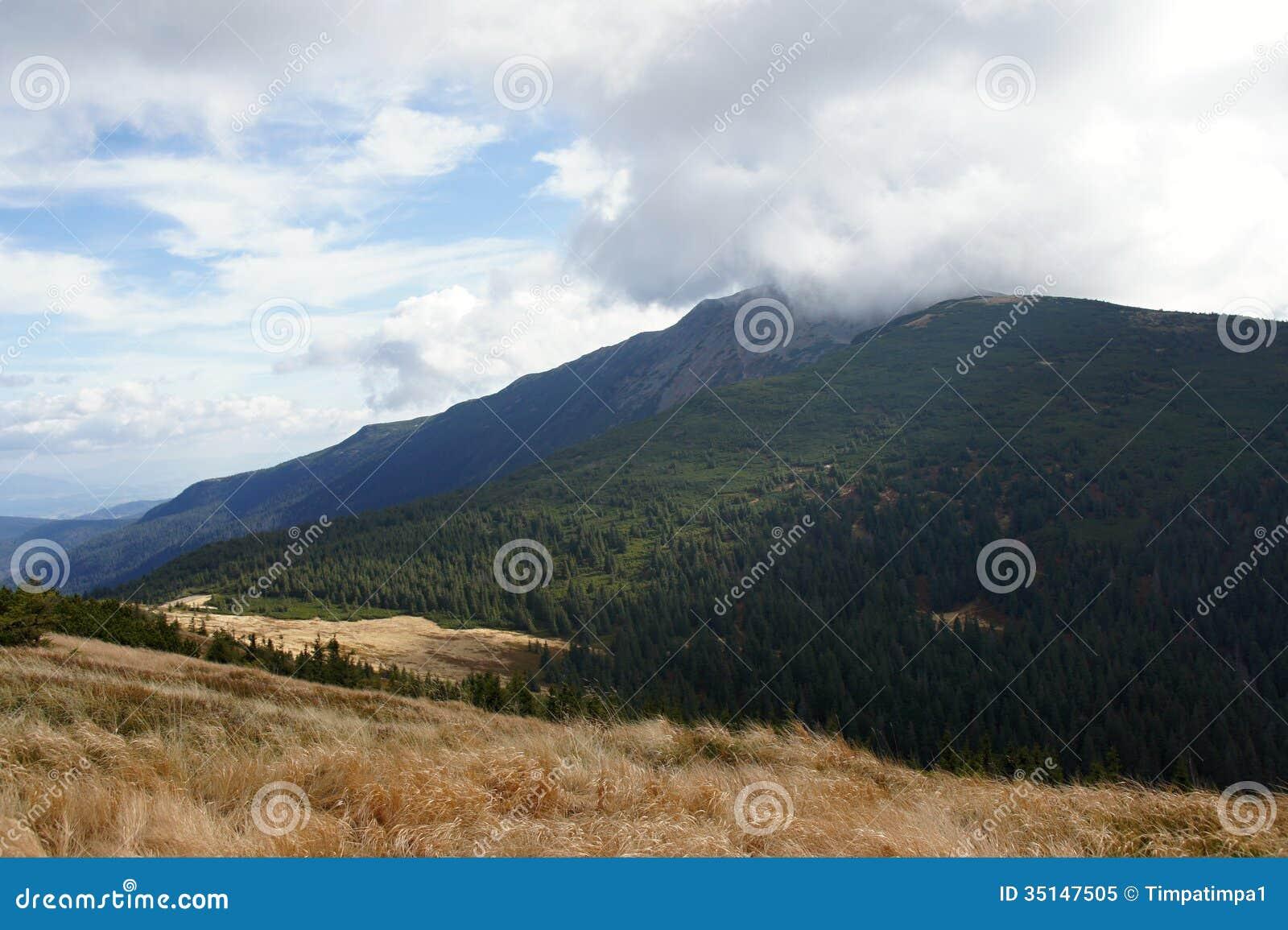 Babia hora 1725 m in clouds, Orava