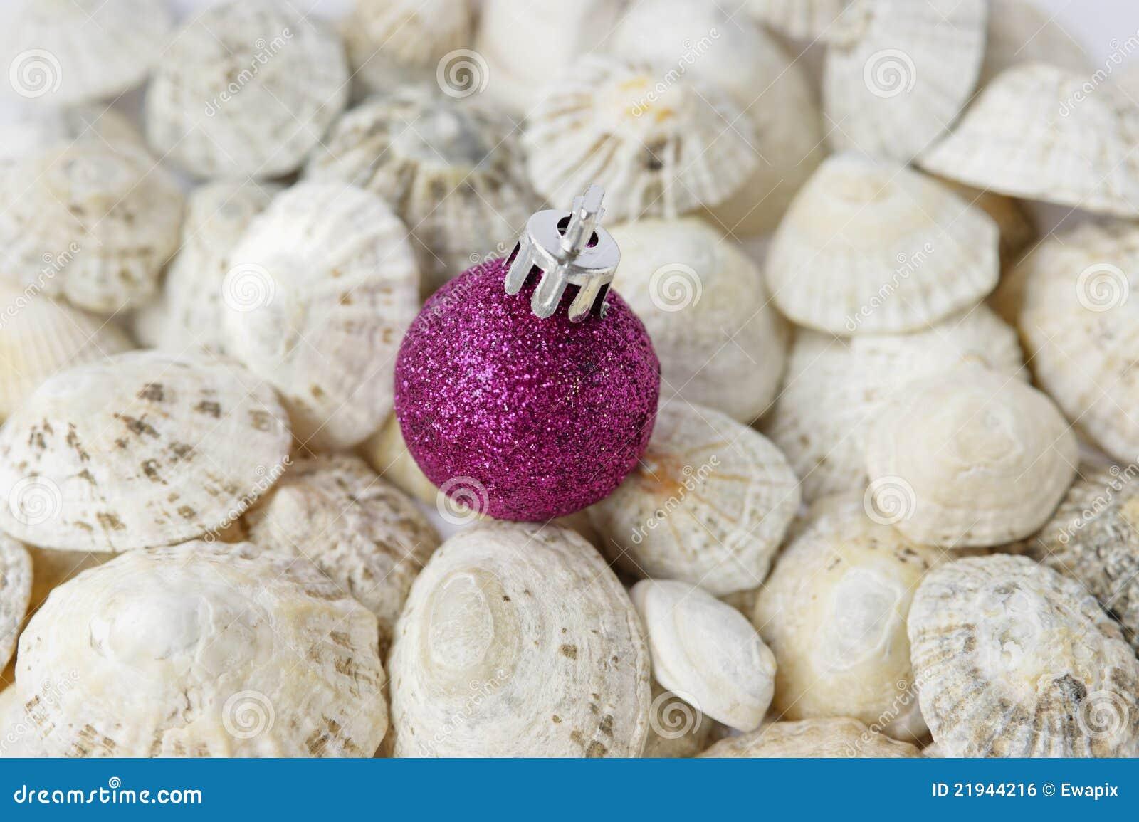 Babiole et seashells pourprés