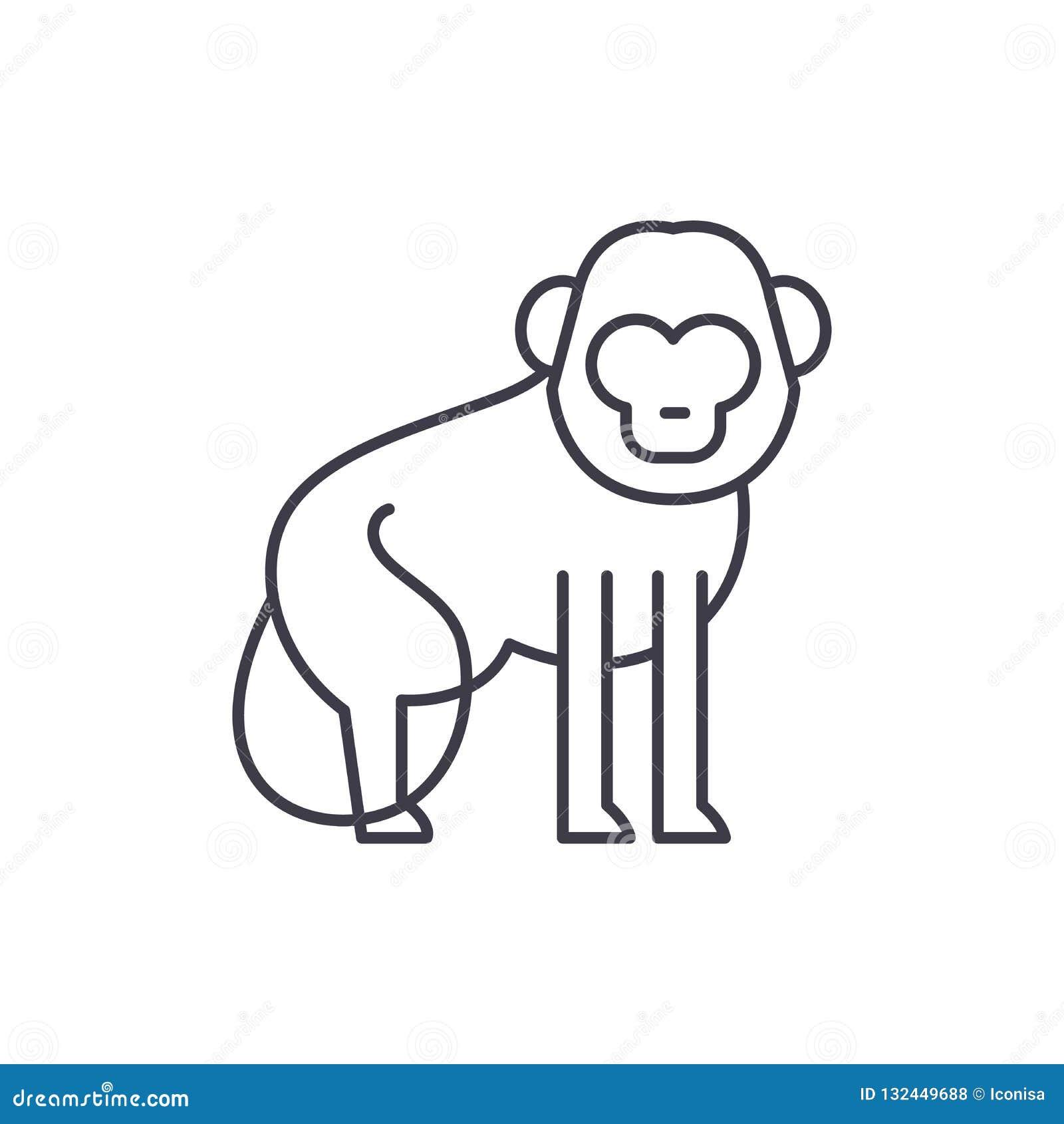 Baboon έννοια εικονιδίων γραμμών Baboon διανυσματική γραμμική απεικόνιση, σύμβολο, σημάδι