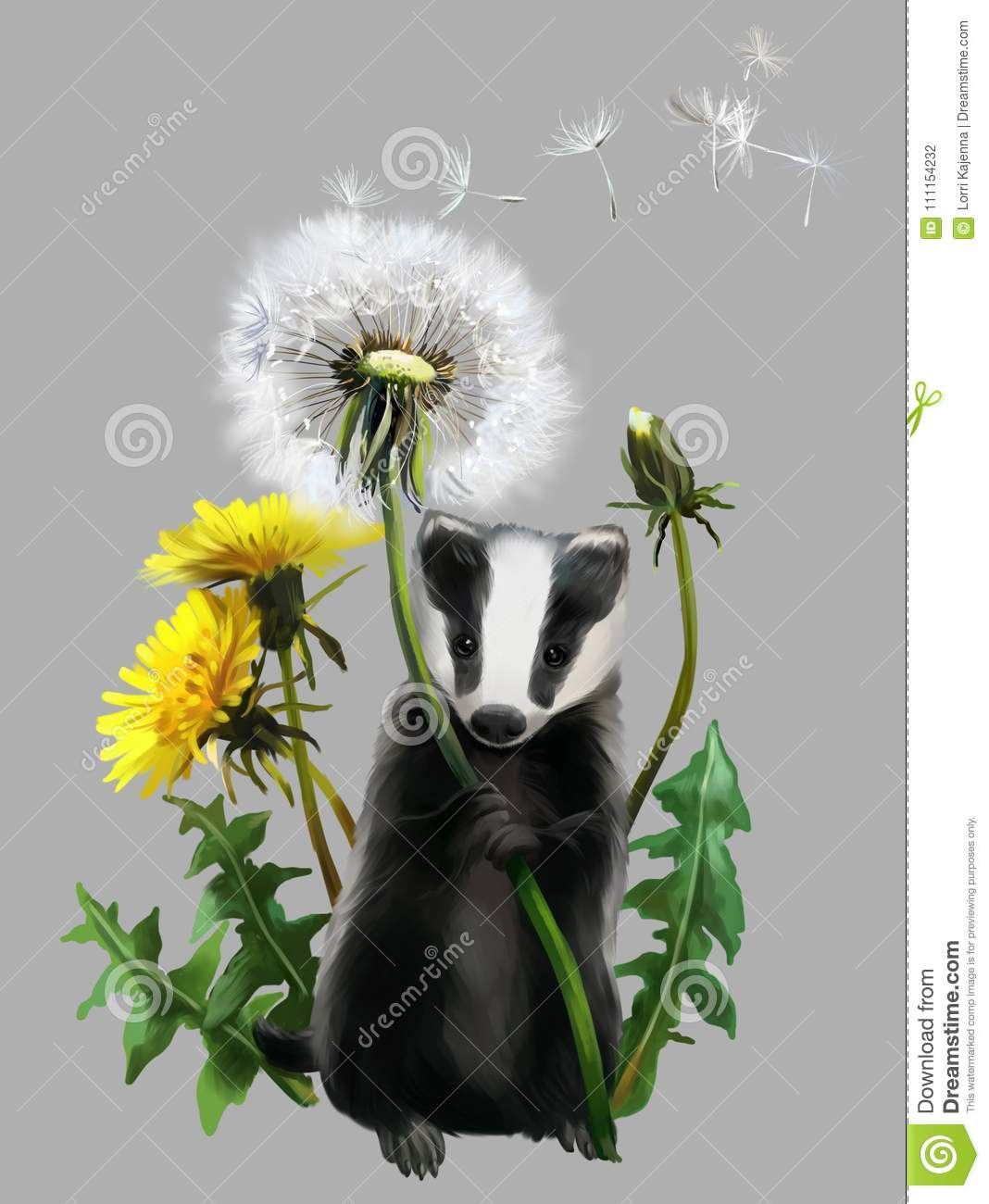 Badger Cartoons Illustrations Amp Vector Stock Images