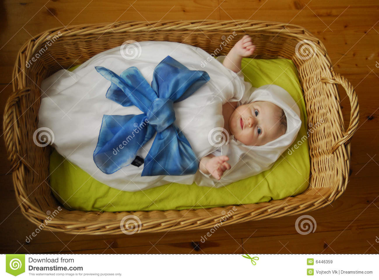 Baby In Basket Royalty Free Stock Images Image 6446359