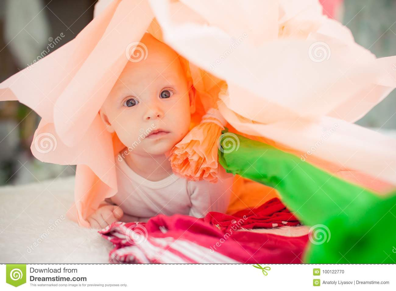 Baby On The Bed In A Paper Flower Stock Photo Image Of Beauty